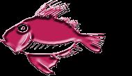 Ribarnica Kovač